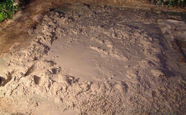 Quicksand_4