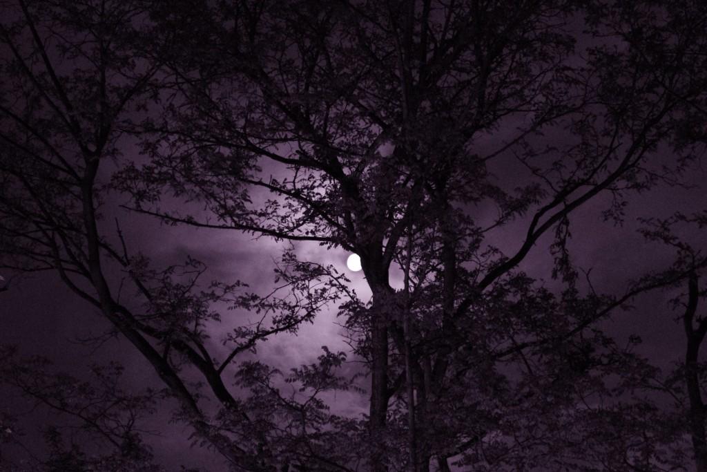 Greenwich_Moon